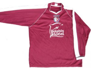 dolphin2jersey_small